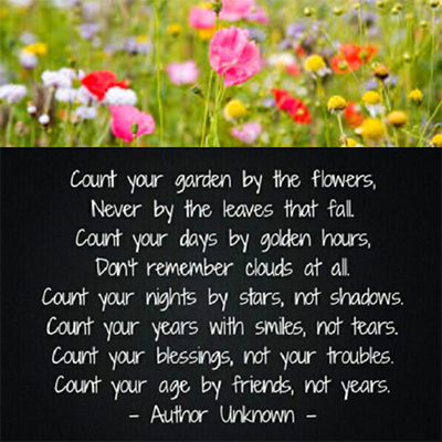 Gedicht - Count your garden by the flowers, never by the leaves that fall. Count your days by golden hours, don't remember clouds at all. Count your nights by stars, not shadows. Count your years with smiles, not tears. Count your blessings, not your troubles. Count your age by friends, not years. Author Unknown